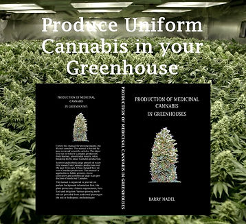 Advert Uniform Cannabis black.jpg