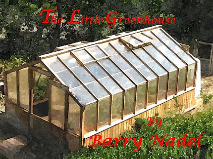 Book Cover Little Greenhouse.jpg