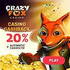 crazy fox.jpg