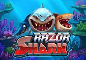 Razor Shark Game Review