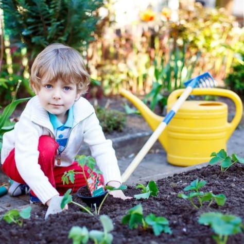 La teinture végétale: l'importance de l'agriculture biologique