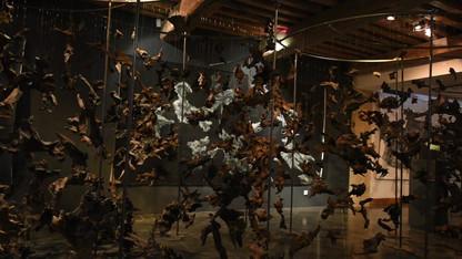 ONKALO Vidéo Musée de l'Ardenne_2.mp4