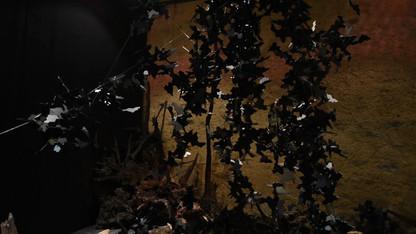 ONKALO Vidéo Musée de l'Ardenne_5.mp4
