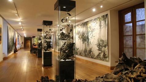 ONKALO Vidéo Musée de l'Ardenne_8.mp4