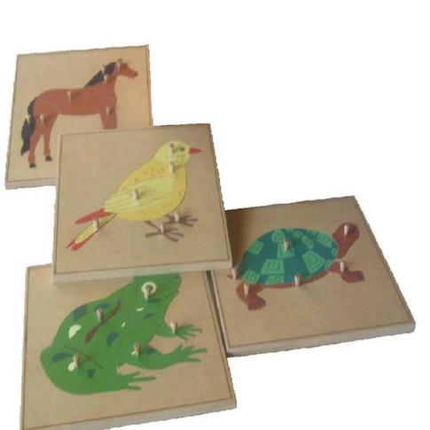 Gabinete de Zoologia
