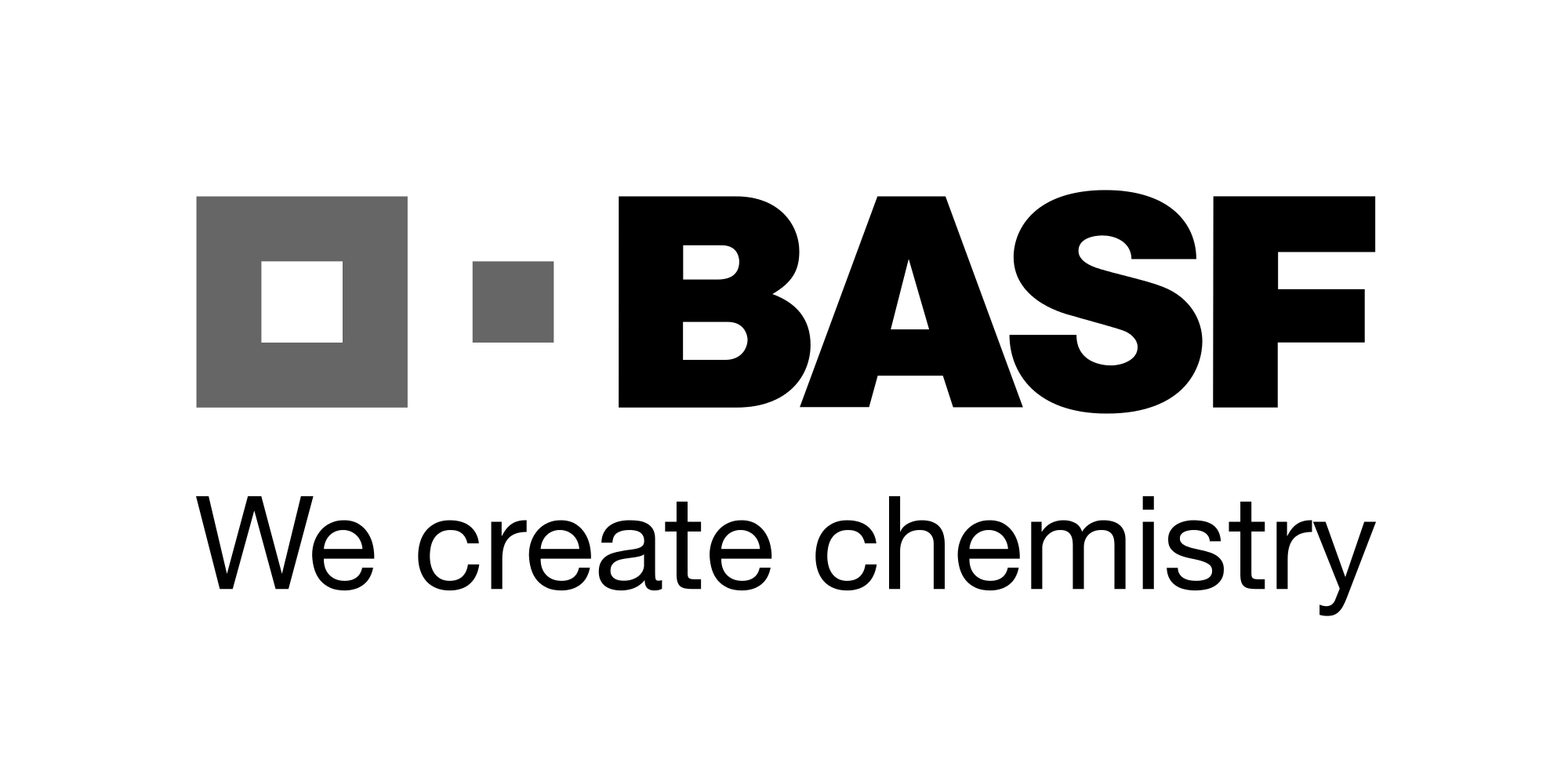 BASF Video Cards