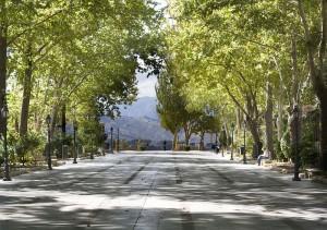 800px-Alameda_del_Tajo-300x211.jpg