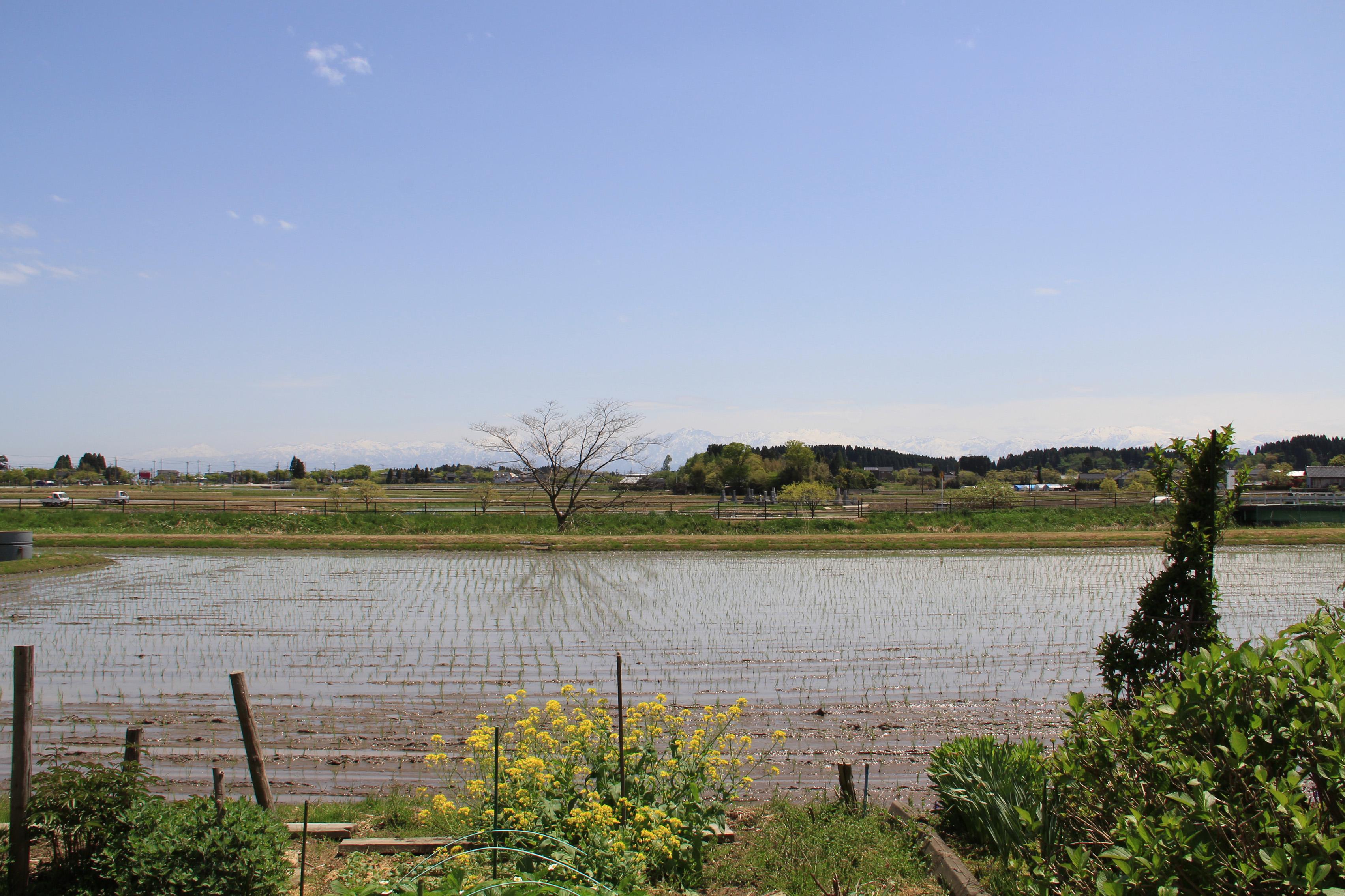 布目沢営農 風景 ⑧