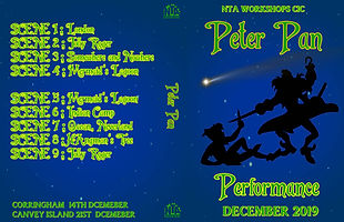 Peter Pan DVD Cover.jpg