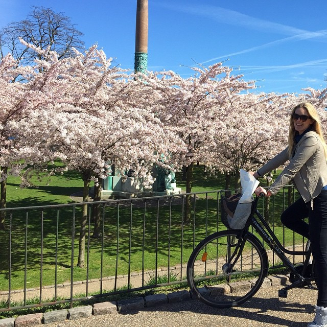 Instagram - #Copenhagen #spring #thedesignseeker #cherryblossom