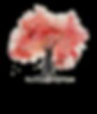 Logo catarsis 2020.png
