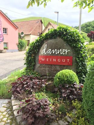 A busman holiday in Baden part 1 - Weingut Danner