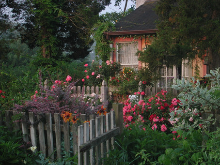 Sugar, Butter, Flour: A Meditation on Stella Parks, Cottagecore, and Home