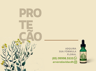 Protecao.png
