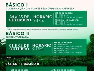 Florais da Amazônia: A Sabedoria da Floresta