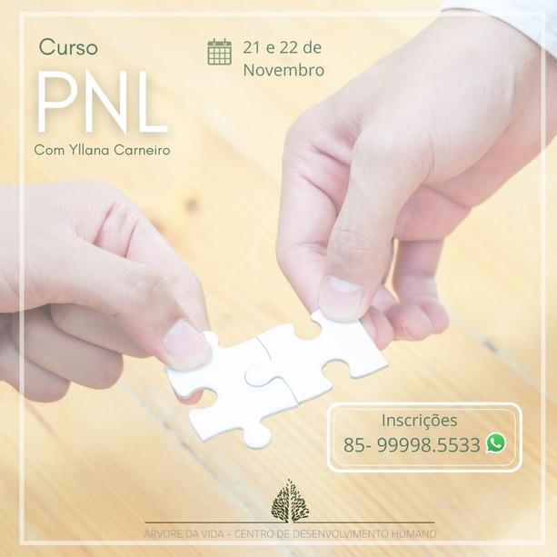CURSO DE PNL.jpg