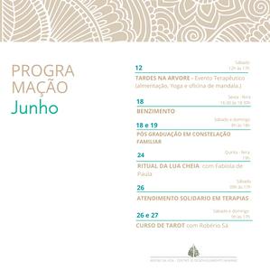 prog 3.png