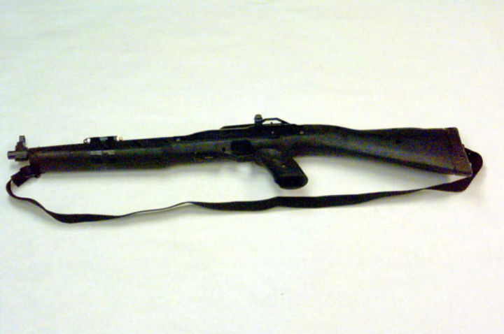 Eric Harris' rifle, Columbine gun