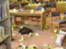 Columbine crime scene photo: library tables evidence markers