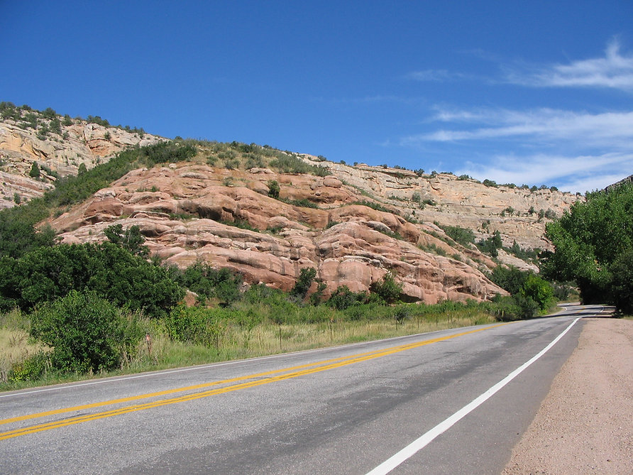 Columbine hogback front range foothills Rockies