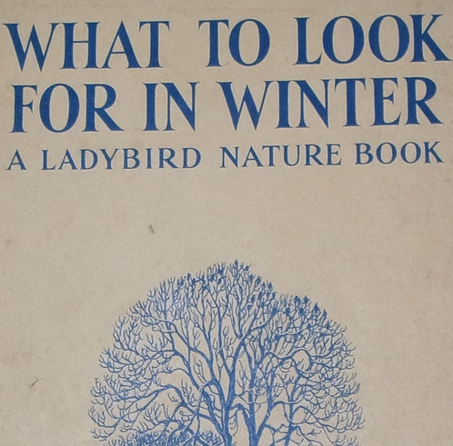 'What To Look For In Winter' Ladybird book