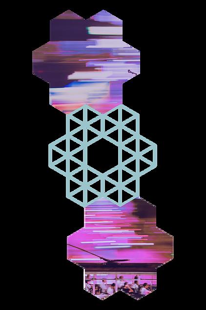 וויקס4.png