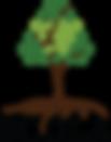 לוגו סקולה.png