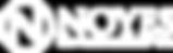 Noyes_logo.png