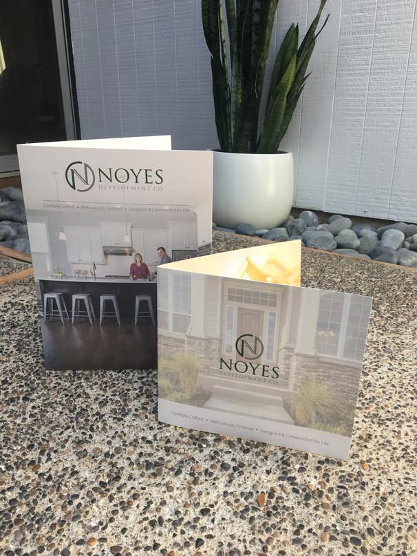 Noyes Development