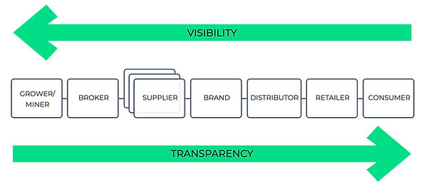 visibility_transparency copy.jpg