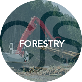 forestry_roll.png