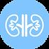 nephrology-tpl=med-box.png