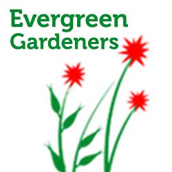 Evergreen Gardeners Gardening Services Fences Billericay Essex