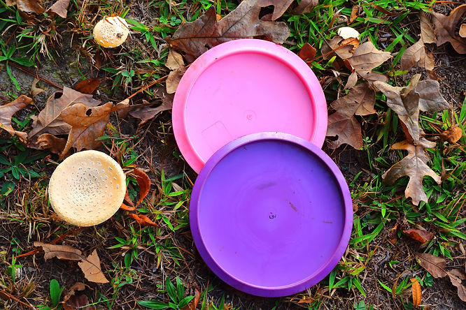 Picture of a purple and pink disc golf discs close to some mushrooms.jpg