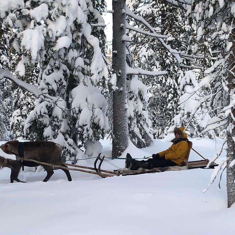 Lappland 2022 intensiv