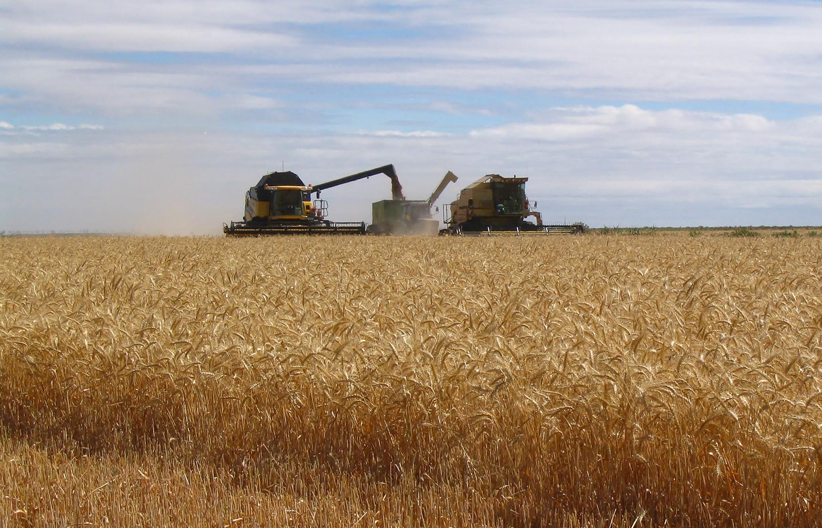 Harvester_Slider 4.jpg