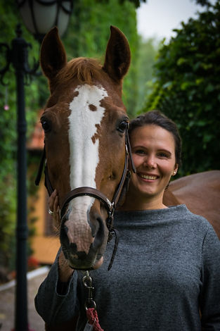 coaching-mit-pferden-marie-charlotte-neu