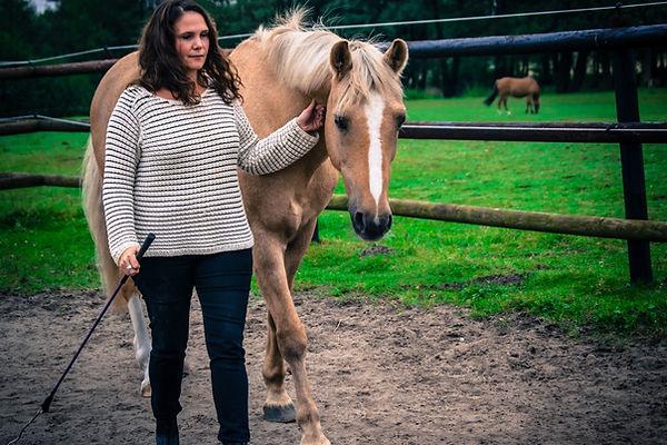 coaching-mit-pferden-persoenlichkeitsent