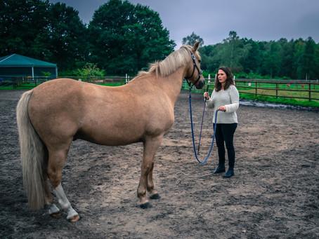 Raidho Healing Horses für Reiter