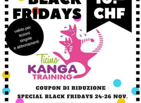 KANGA 4 SPECIAL BLACK FRIDAYS!