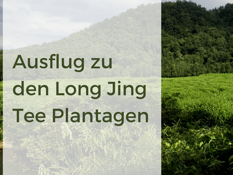 Unser Ausflug zu den Long Jing Teefeldern in Hangzhou