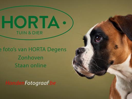 Warm welkom bij Horta Zonhoven
