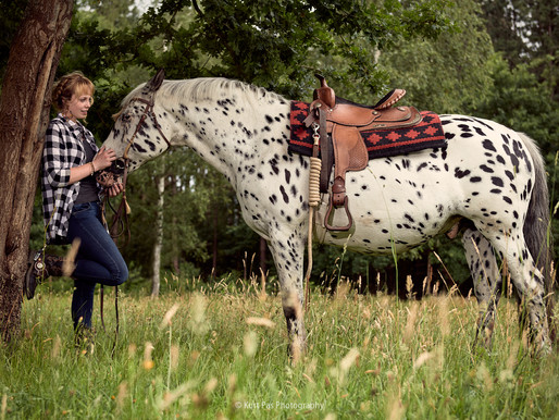 pippi langkous paard