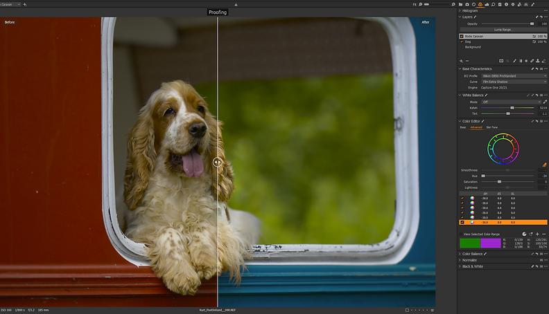 Kleur Aanpassen met Capture One COLOR ADVANCED tool.png