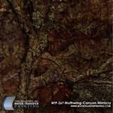 WTP-267-Mothwing-Canyon-Mimicry.jpg