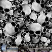 WTP-445-Skullz.jpg