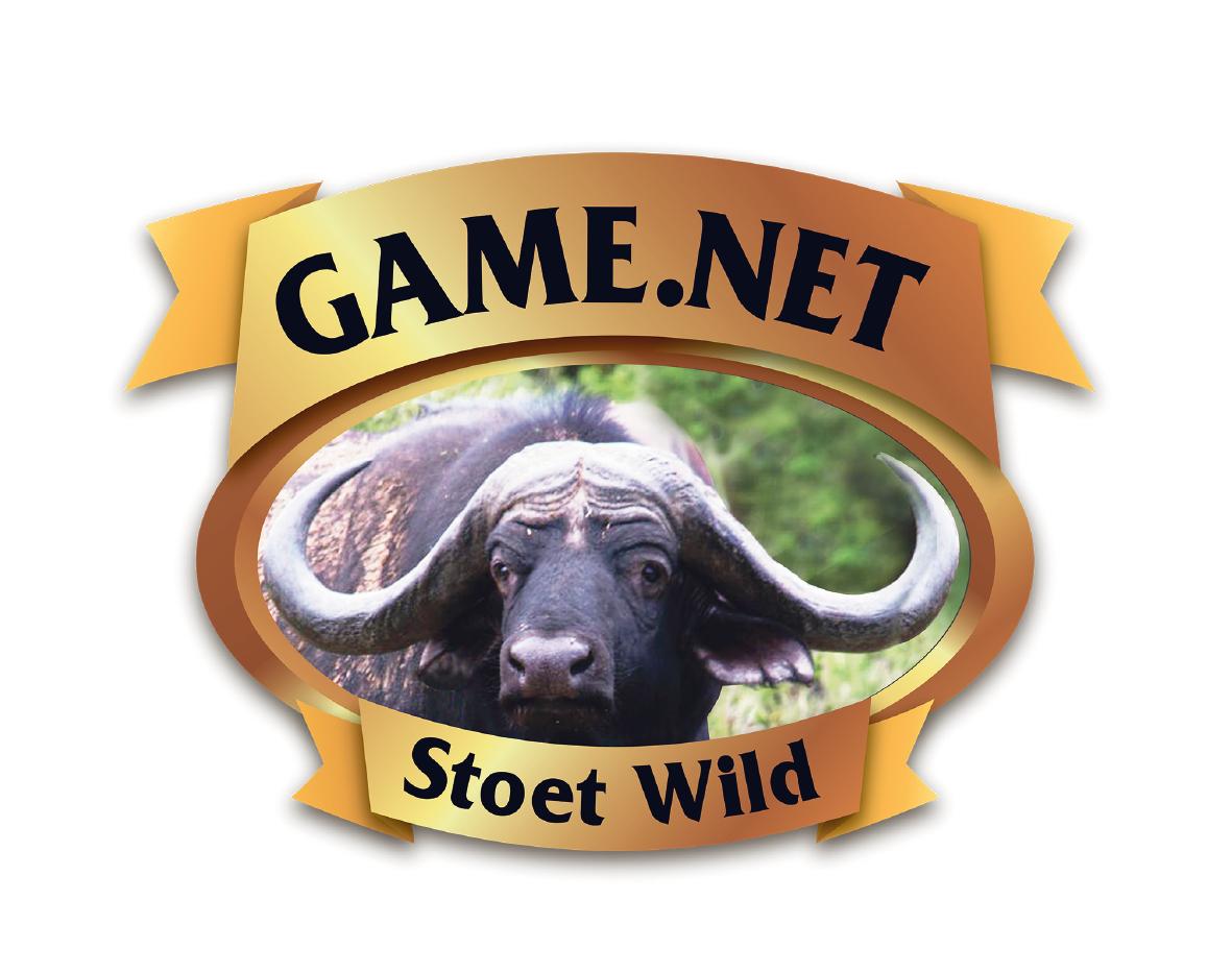 GameDotNet-01.png