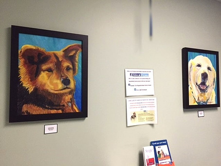 Art install at VCA Wrightsville Beach Animal Hospital