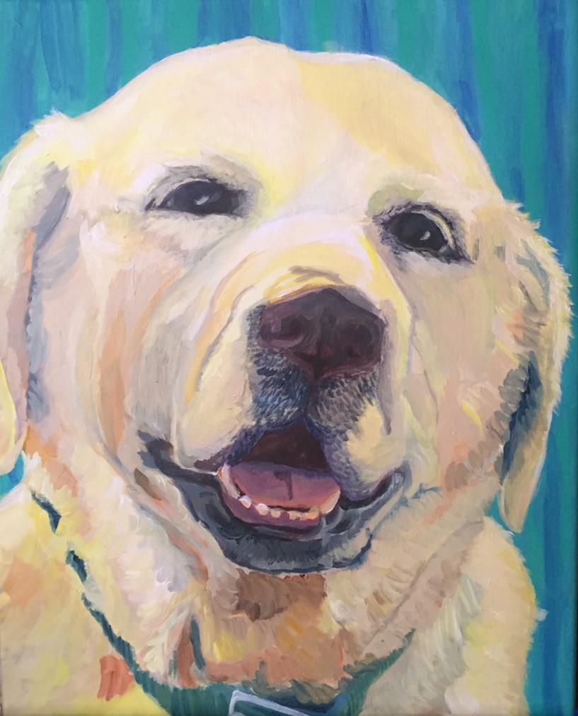 Oliver the dog