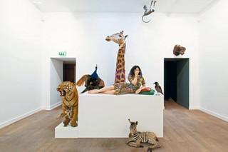 Coup de Coeur du mois -  Sophie Calle au musée de la chasse et de la nature